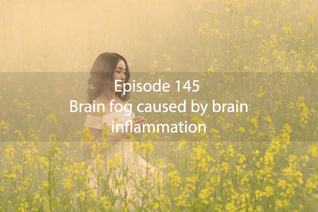 Ask Dr Kan Show Ep 145 – Brain fog caused by brain inflammation