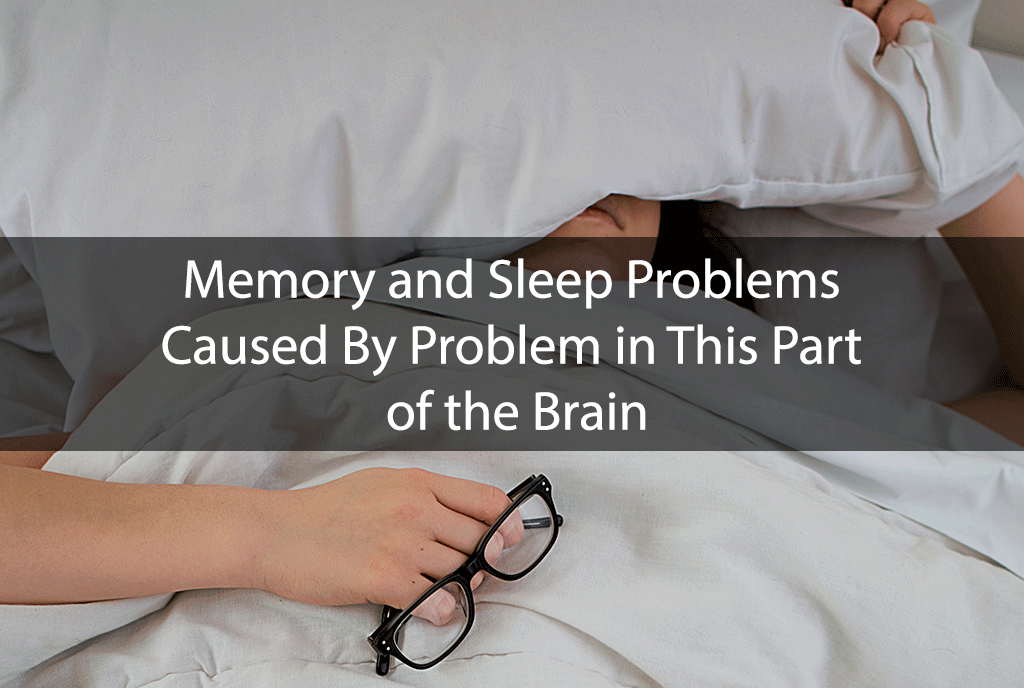 Memory and Sleep Problems Caused By Problem in This Part of the Brain
